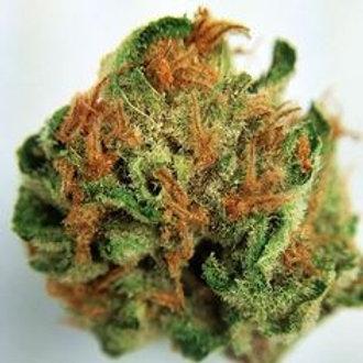 MullumbimbyMadness marijuanastrain