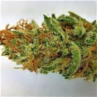 Rare Darkness marijuana strain