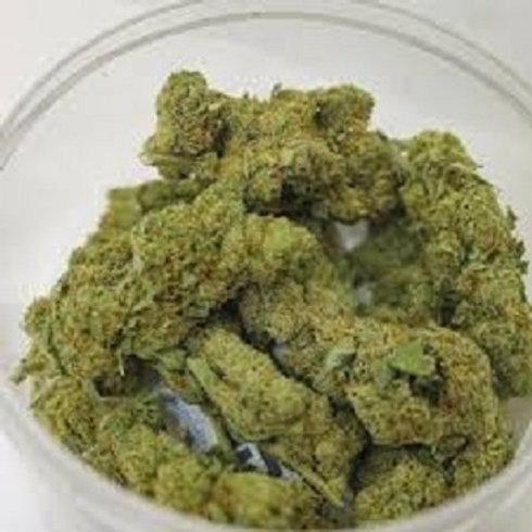 Dutch Treat weed