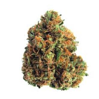 F.O.G. marijuana strain