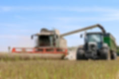 bigstock-harvesting-81109454.jpg