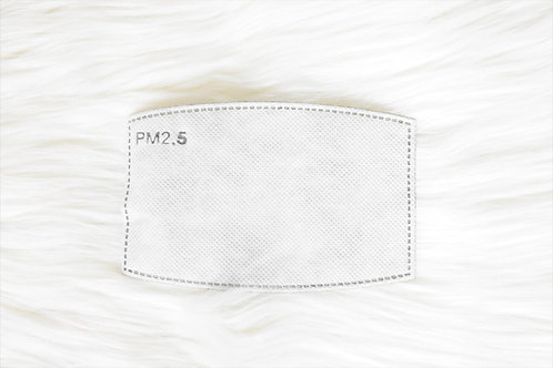 PM2.5 Face Cover Filter