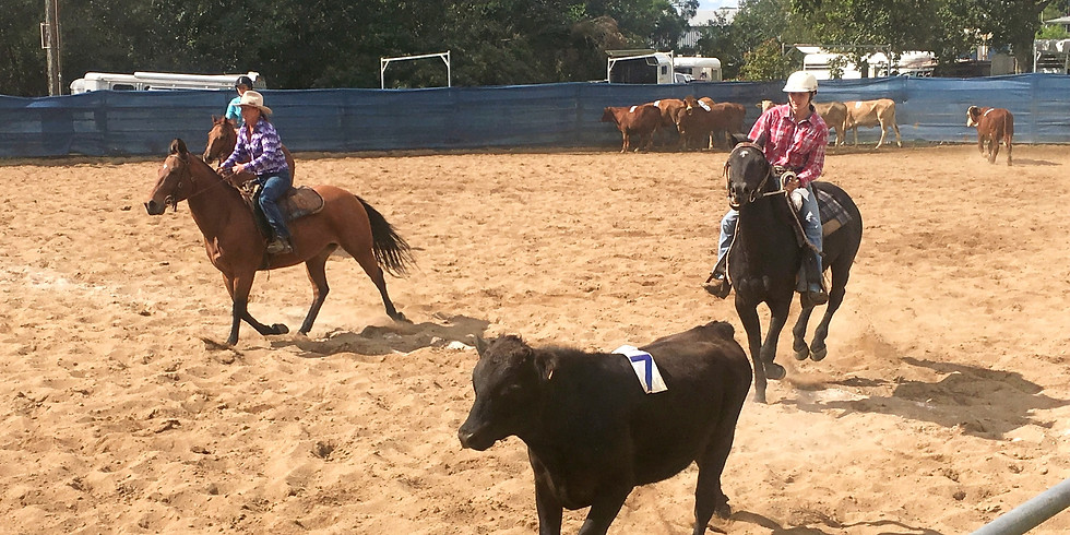 Team Penning Buckle Series Round  2 - Postponed due to Covid-19