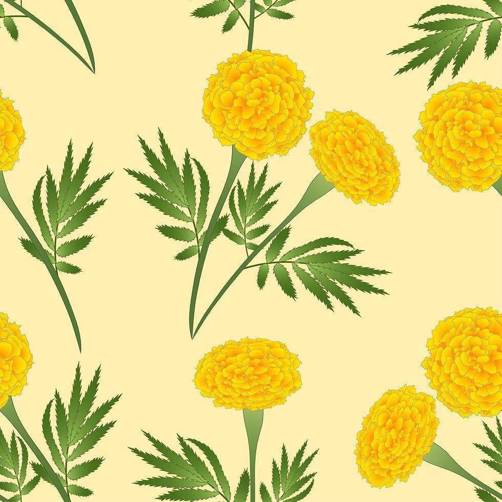 yellow-marigold-ivory-beige-background.j