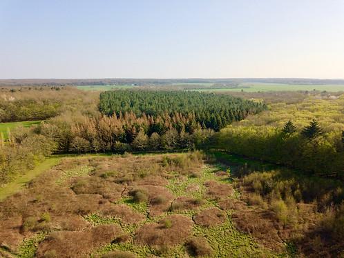 Beaufort Drone photo vue du ciel d'une friche en reconversion parc boisé en Berry