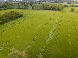Beaufort Drone photo aérienne d'une parc