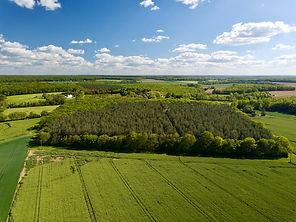 Beaufort Drone photo d un massif forestier dans l'Indre pres de Chateauroux