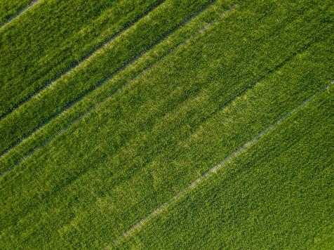 Beaufort Drone photo de culture en Beauce paysage nature Orléans
