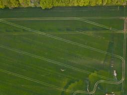 Beaufort Drone photo culture dégat gibier inetmpérie grele inspection expert visite indemnisation assurance Berry Cher Vierzon Bourges