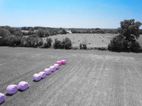 Photo drone Balles de foin rose en Berry