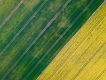 Beaufort drone photo de cultures paysage nature flore champ Berry Indre Cher