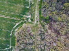 Beaufort Drone photo artistique paysagère nature flore Poitiers Chatellerault Poitou Montmorillon