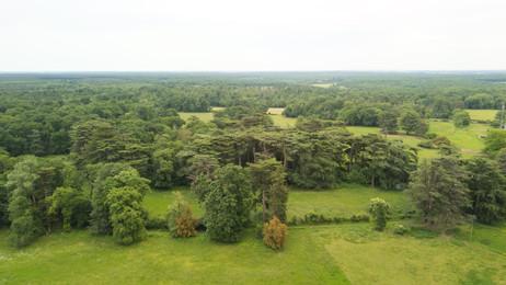 Photo par drone d'un paysage forestier à Poitiers, Vienne 86