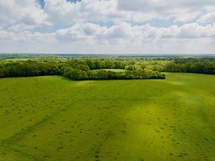 Beaufort Drone photo de prairies et massif forestier en Berry près de Chateauroux