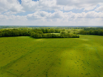 Photo par drone de prairies et massif forestier à Angoulême, Charentes 16
