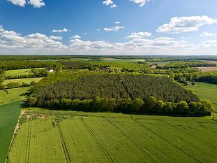 Beaufort Drone photo d'un massif forestier en Berry dans l'Indre Expert et inspection