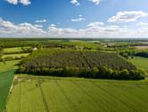 Photo par drone d'un massif forestier en Berry, dans l'Indre 36, près de Châteauroux