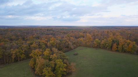 Photo prise par drone d'un forêt en automne à Tours, Indre et Loire 37