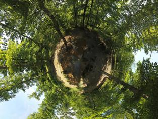 Photo panorama 360 par drone, Forêt à Tours, Indre et Loire 37