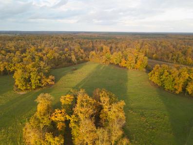 Photo prise par drone d'un forêt en automne à Châteauroux, Brenne, Indre 36