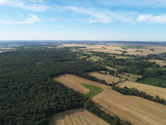 Photo drone Chateauroux territoire foret