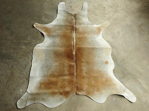 P13- 2,87 m2 Grey Caramel