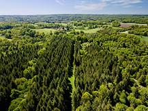 Beaufort Drone photo d'un massif forestier Poitou Poitiers Chatellerault Montmorillon