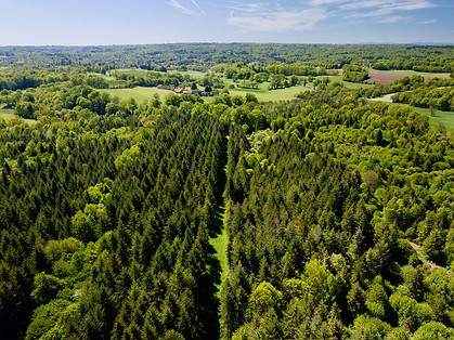 Beaufort Drone photo domaine propriété Poitiers Chatellerault Montmorillon expert forestier