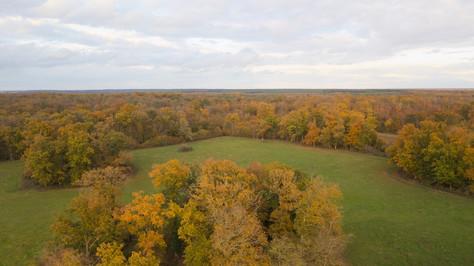 Photo prise par drone d'un forêt en automne à Poitiers, Vienne 86