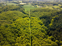 Beaufort Drone photo massif forestier paysage Touraine Tours Loches