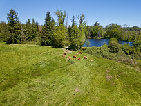 Beaufort Drone photo nature paysage étang propriété teritoire domaine Limousin Limoges Montmorillon Haute Vienne