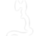 SAZ logo