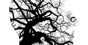 As Bases Biológicas dos Transtornos Mentais