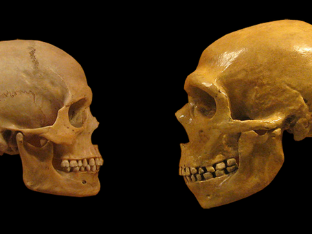 Os neandertais podiam falar? O debate em aberto sobre a linguagem neandertal