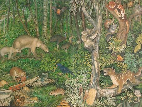 Organismo e ambiente: quem é quem nessa história?