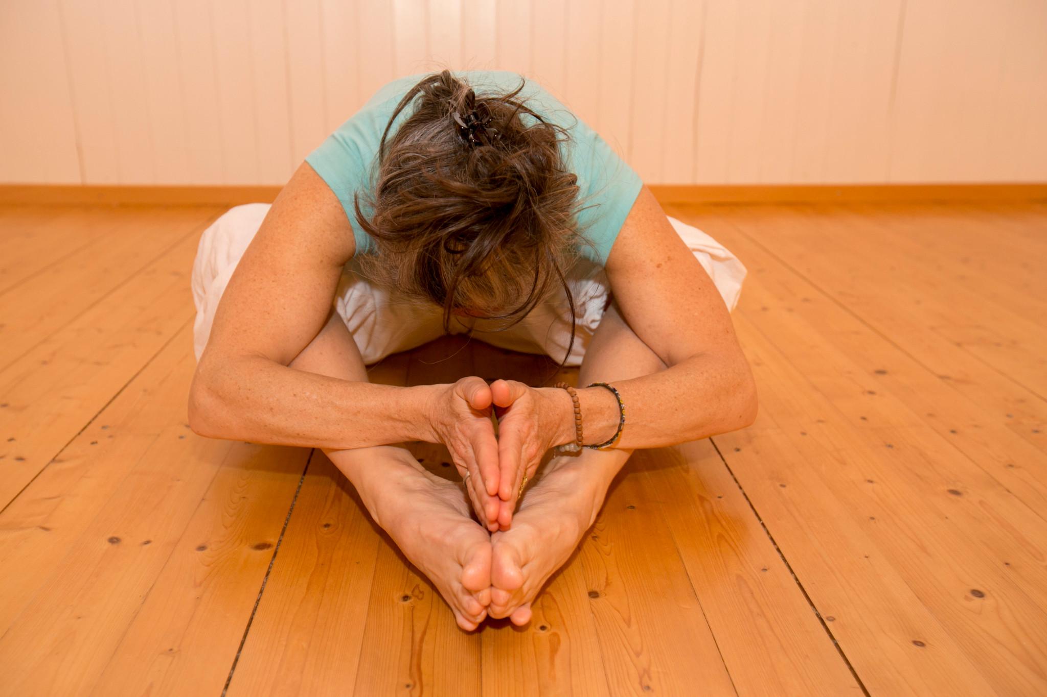 The Art of body-mind holistic coaching