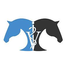TAEM logo.jpg