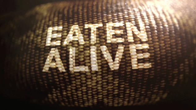 Eaten' Alive - Discovery Channel