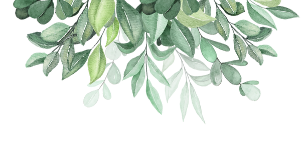 Top-down-foliage-01.png