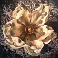 Lacey Magnolia