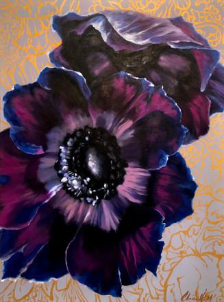 Violet Anemone