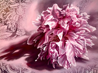 Pink Patterned Peony