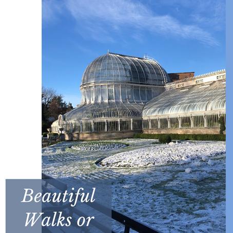 Beautiful Walks or Runs in Belfast