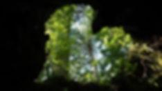 A7300322_edited.jpg