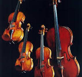Home | Cairns Concert Orchestra | Cairns | Queensland | Edge