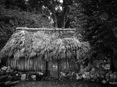 Mayan House