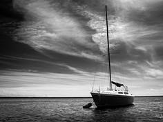 Sailing Carolina