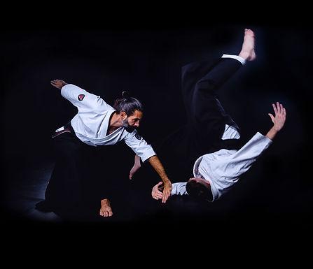 aikido_zenbukai_sarasota.jpg