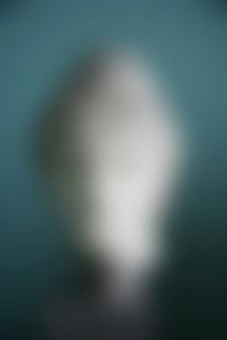 head 21