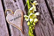 feeling-white-flower-love_edited.jpg